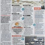 Health issues due to Potholes
